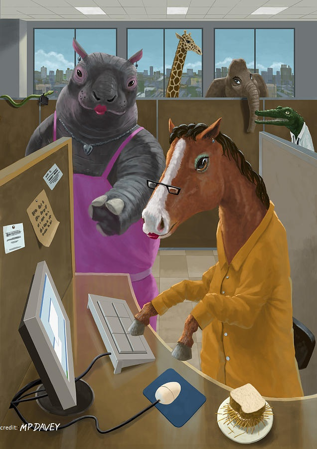 animal-office-martin-davey